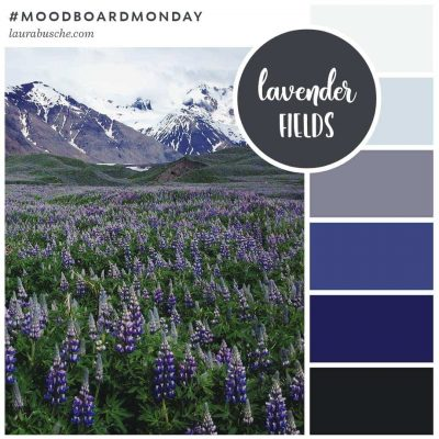 Brand Moodboard: Lavender Fields