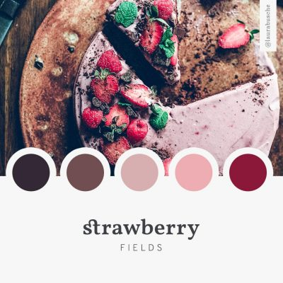 Brand Moodboard: Strawberry Fields