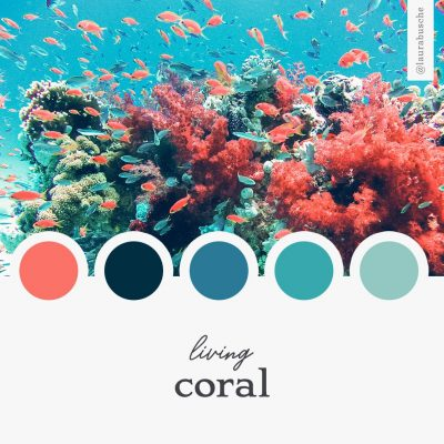 Brand Moodboard: Living Coral