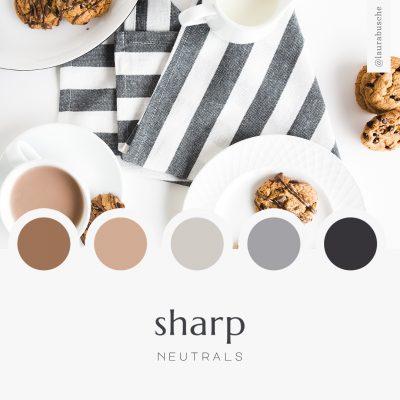 Brand Moodboard: Sharp Neutrals