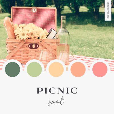 Brand Moodboard: Picnic Spot