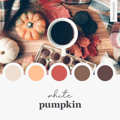 Brand Moodboard: White Pumpkin