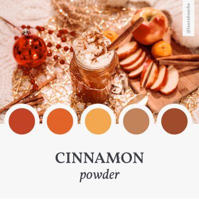 Brand Moodboard: Cinnamon Powder