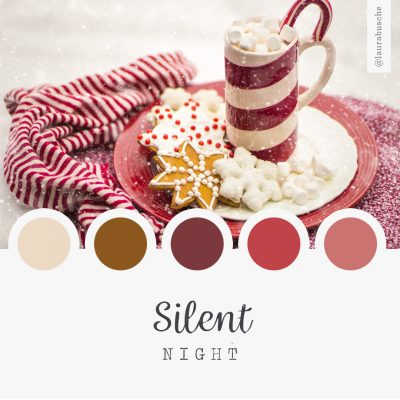 Brand Moodboard: Silent Night