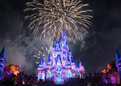 Can't Go to Disney Parks? The Magic Comes to You ✨