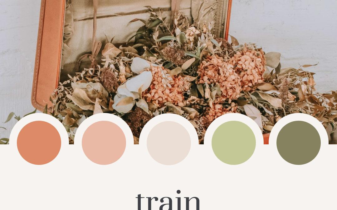 Brand Moodboard: Train Ride